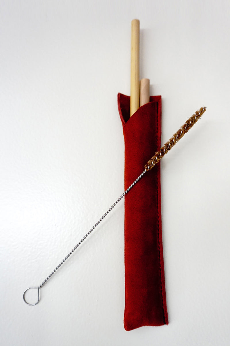 Bamboo Straws in Leather Case