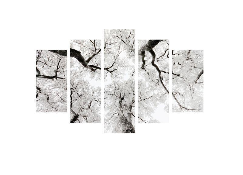Up in the Trees/ Branch Up 2 - 5 Panel Canvas Print - 5 Panel Canvas Wall Art