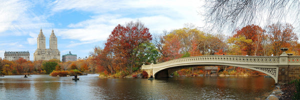 Central Park in Fall - Photography Print on Canvas - Canvas Panoramic Wall Art