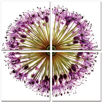 Flower Circle <h2>4 Panel Nature Canvas Photography Print</h2>