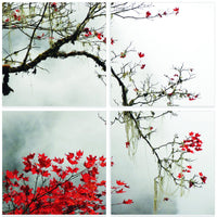 Autumn Branch <h2>4 Panel Nature Landscape Canvas Photography Print</h2>