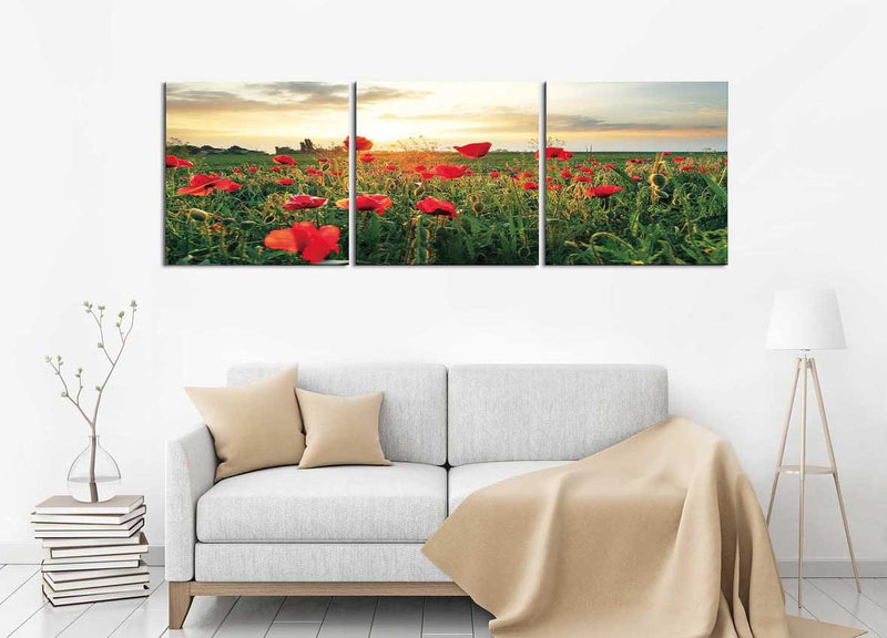products/230-_7805_Red_Poppies_jpg_png_1920x_15ee8d54-2b67-4969-9caa-3b16f4e50004.jpg