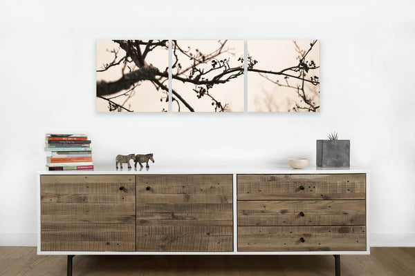 Branch <h2>3 Panel Nature Landscape Vinyl Photography Print</h2>