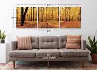 Bench in the Park <h2>Frameless 3 Panel Nature Landscape Vinyl Photography Print</h2>
