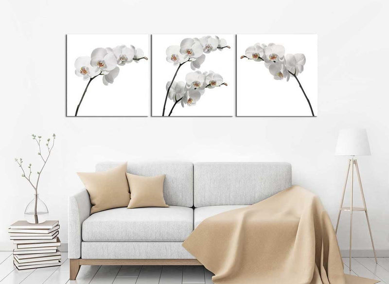 products/76-_61019abc_White_Orchids_copy_png_1920x_69660102-3dd9-474a-8d98-b604ec8b08a6.jpg