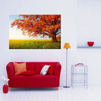 A Day in the Field (Large) <h2>Nature Landscape Canvas Photography Print</h2>