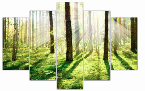 Sunlight Reflection - 5 Panel Canvas Print - 5 Panel Canvas Wall Art