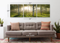 Enchanted Forest <h2>3 Panel Nature Landscape Vinyl Photography Print</h2>