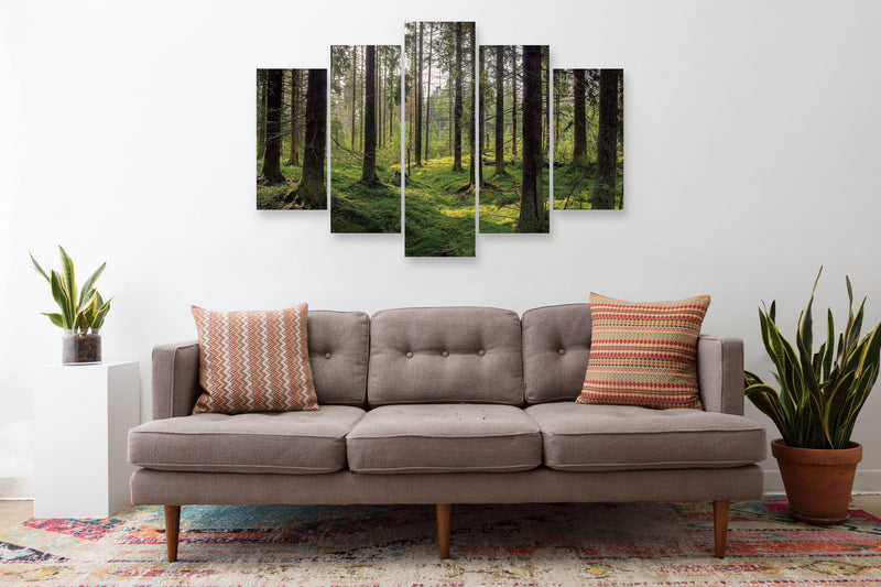 products/Sunlight_Forest1_1.jpg