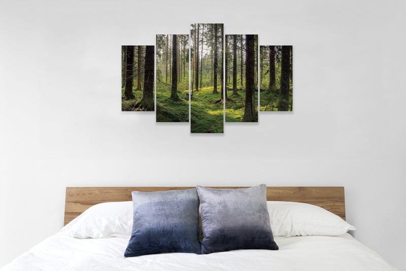 products/Sunlight_Forest1_2.jpg