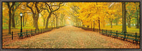 A Walk in the Park <h2>Famed Nature Landscape HD Canvas Photography Print</h2>