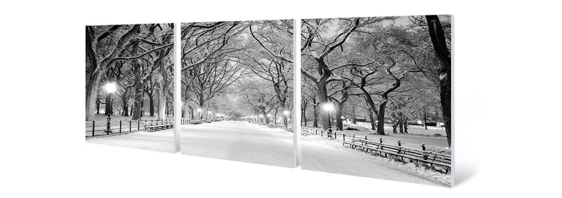 products/central-park-winter.jpg