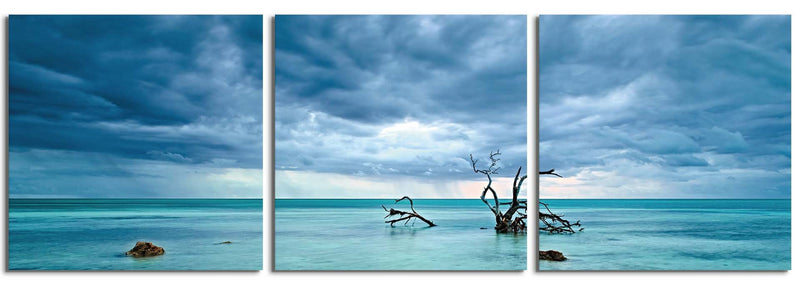 products/cerulean-silence-3-panel-photography-print_5a691e9c-8404-4e6f-9ee5-d935881abbdd.jpg