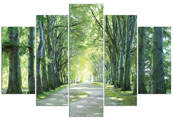 Sunlight Forest (HD Canvas 5-Panel)
