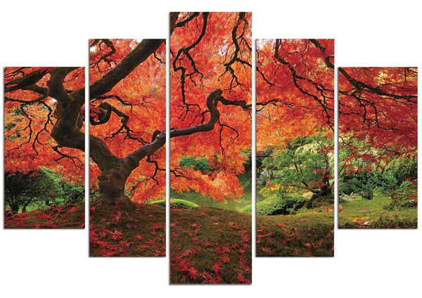 Japanese Maple #2 (HD Canvas 5-Panel)