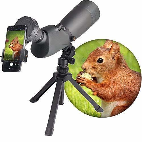 Scope Recording Phone Adapter
