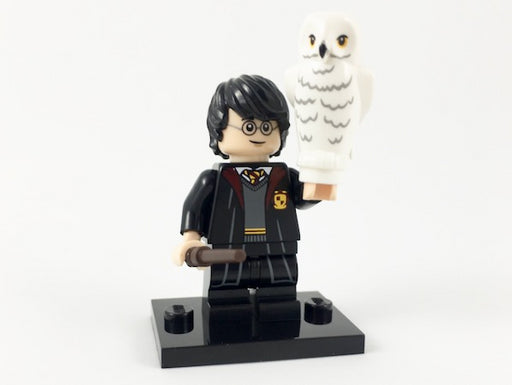 Harry Potter in School Robes, Harry Potter & Fantastic Beasts (Complete Set with Stand and Accessories)