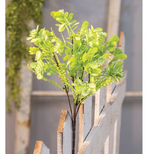 *Green Buds Succulent Bush 12""