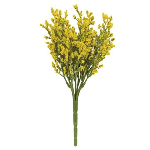 Array Astilbe Bush Yellow