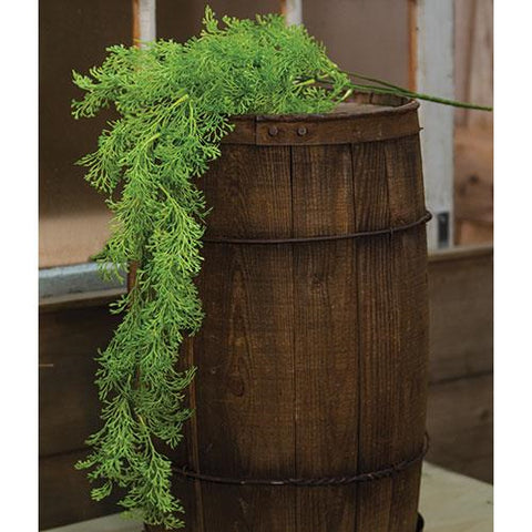 Coral Fern Hanging Bush 33""