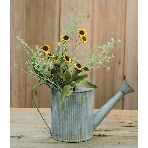 Bird's Eye Daisy Bush Yellow 18""