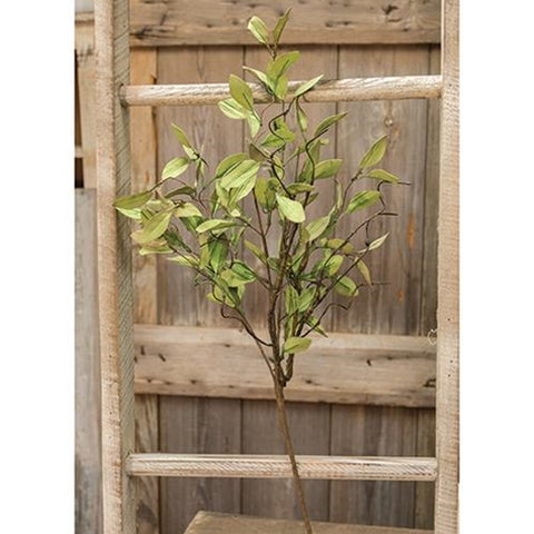Sage Leaves & Twigs Spray 25""