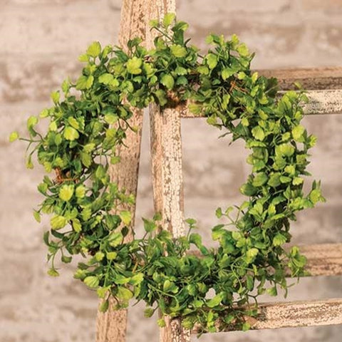 Maiden Hair Fern Wreath 10""