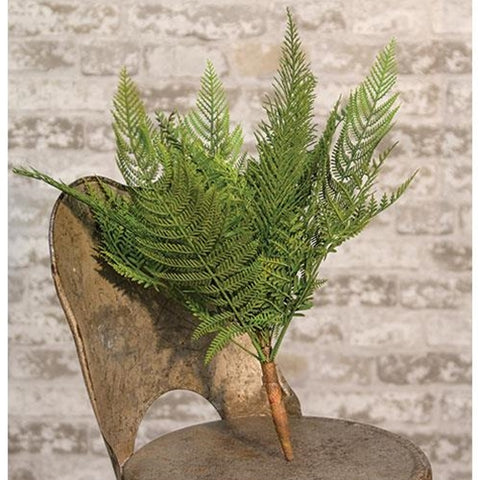 Deer Fern Bush 16""