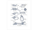 Jackie Maloney Nautical Knot Chart Watercolor Print