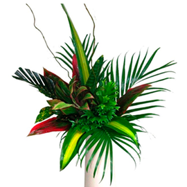 PREMIUM FOLIAGE BUNCH | TROPICAL FLOWERS
