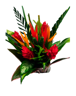 ROUND WILD HELICONIA BOUQUET | TROPICAL FLOWERS
