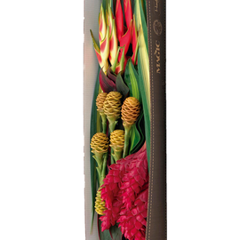 SOL BOX | TROPICAL FLOWERS