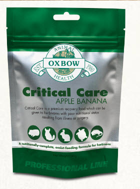 Oxbow Critical Care Small Animals Apple Banana Recovery Food