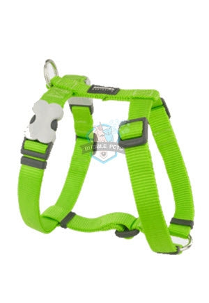 Red Dingo Classic Harness in Lime Green