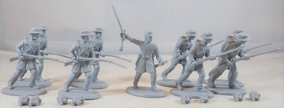 Expeditionary Force American Civil War Confederate Infantry Army