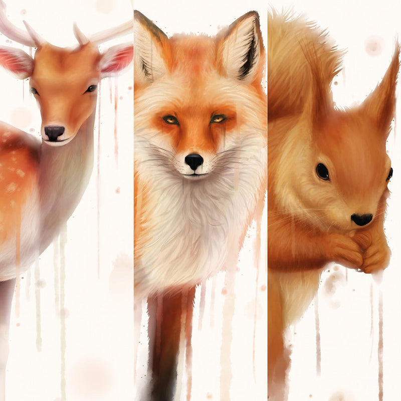 The Forest Animals Collection
