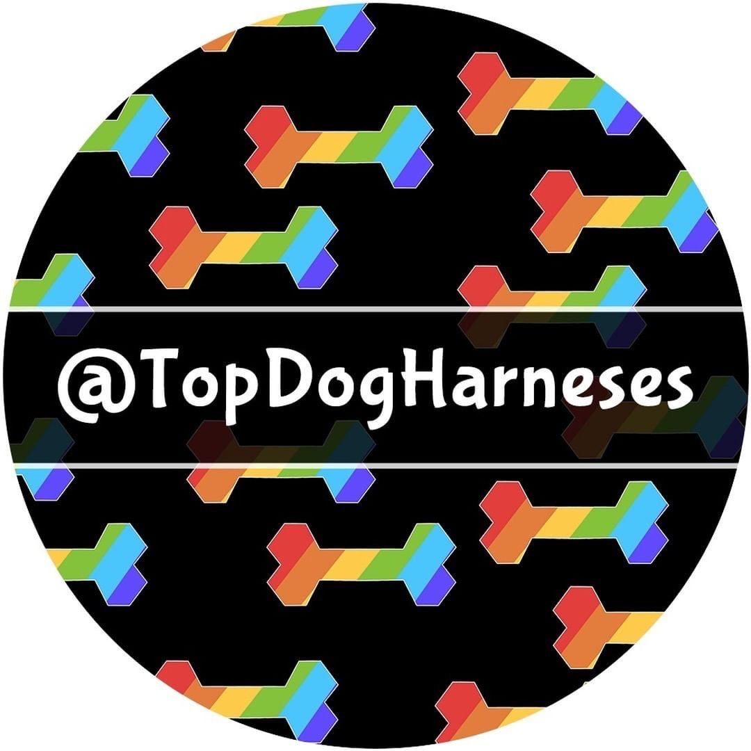 RainBone - ID Tag - TopDog Harnesses