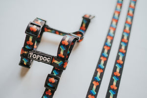 Strap Dog Harness - RAINBONE - TopDog Harnesses
