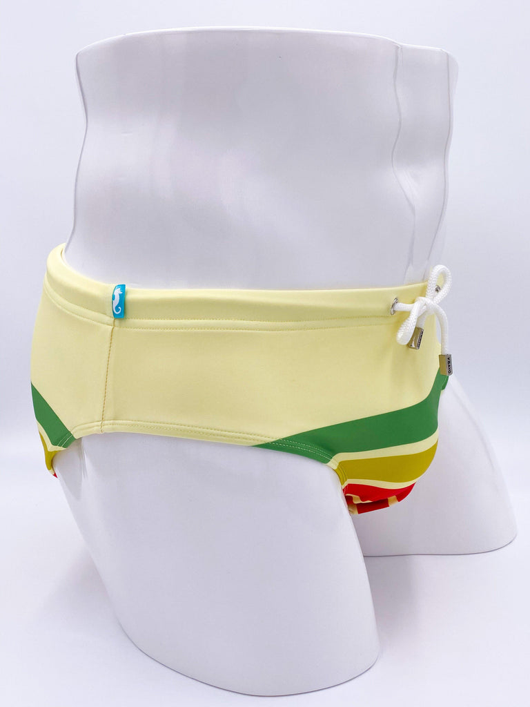 The Carlyle Swimsuit Brief