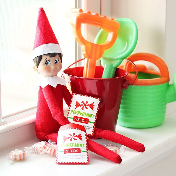 Christmas Elf Kit