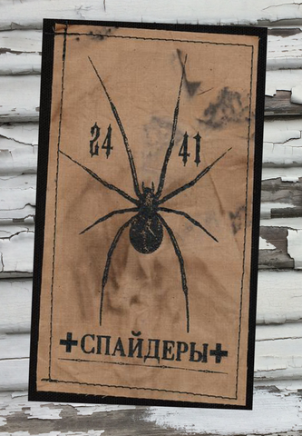 Spider 2441 Patch