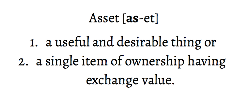 Asset [as-et] 1. a useful and desirable thing, or 2. a single item of ownership having exchange value.
