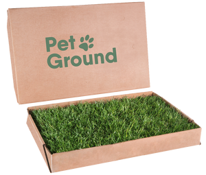Photo of PetGround, sustainable cardboard box with natural and fresh grass, is the definitive solution to teach pets to do their needs inside the house in their favorite corner.