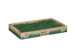 PetGround for Cats