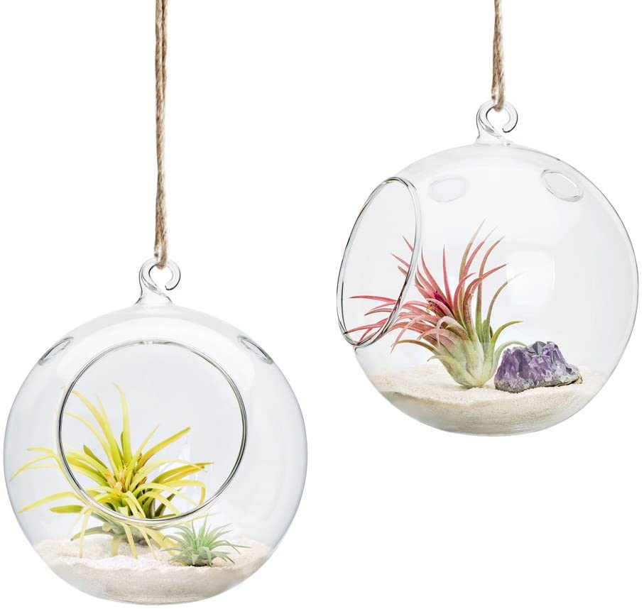 Hanging Glass Globe