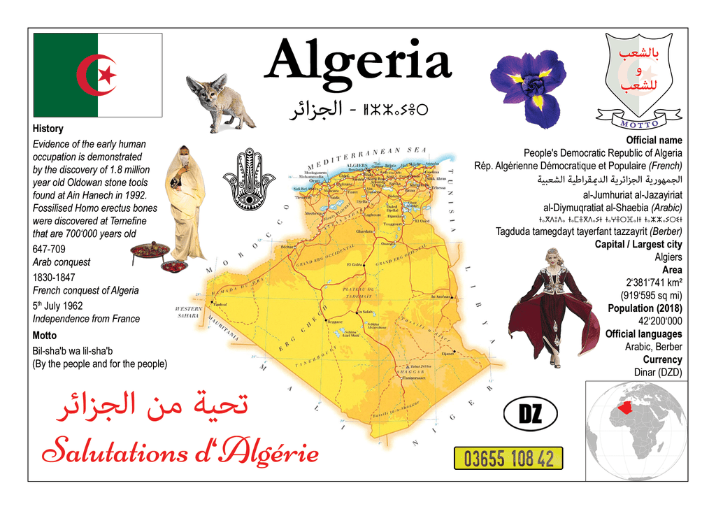 AFRICA | Algeria MOTW - top quality approved by www.postcardsmarket.com specialists