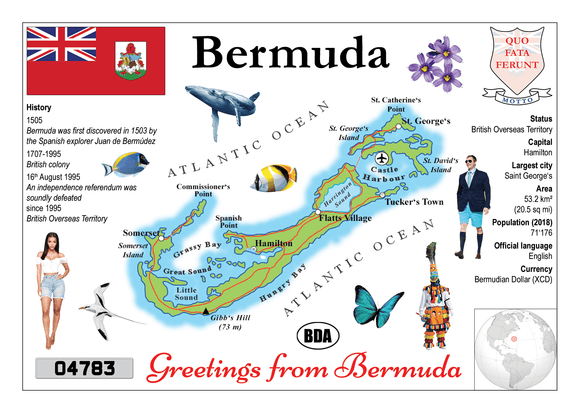 North America | Bermuda MOTW - top quality approved by www.postcardsmarket.com specialists