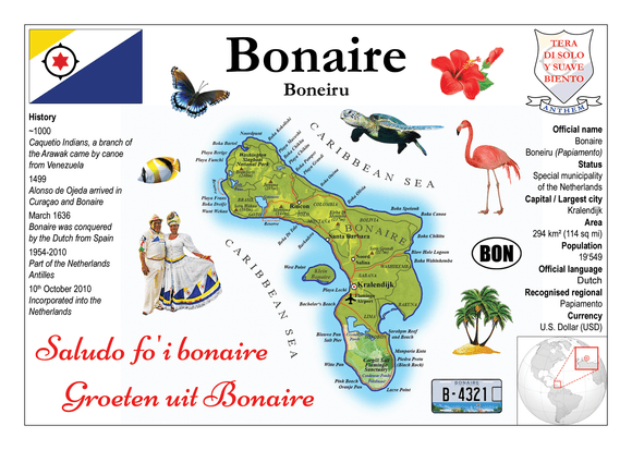 South America | Bonaire MOTW - top quality approved by www.postcardsmarket.com specialists