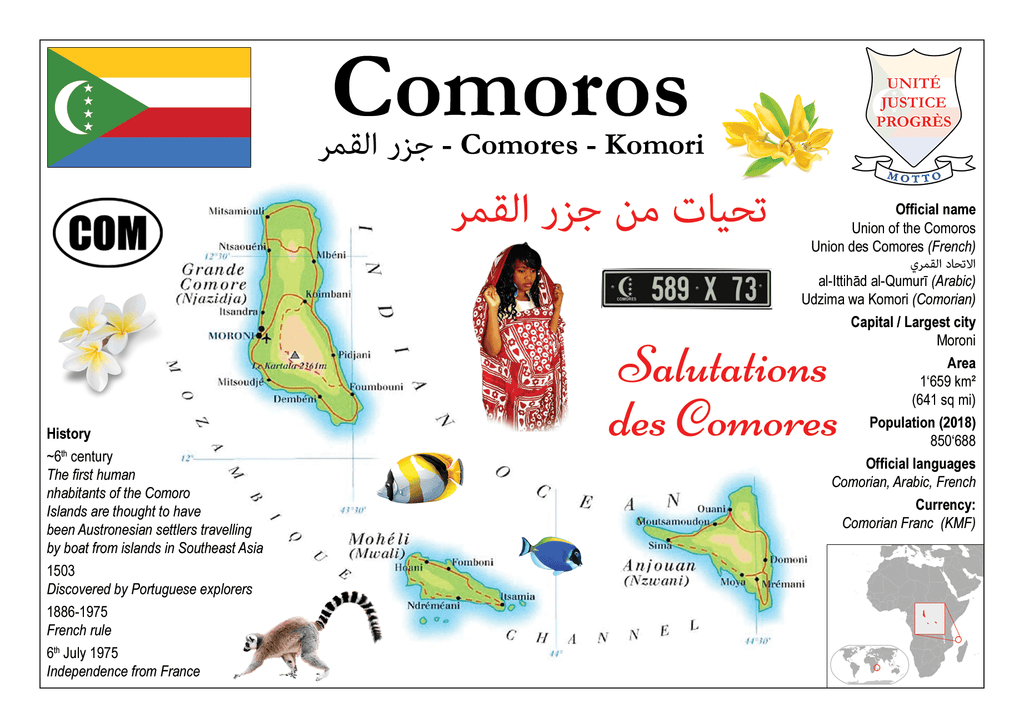 AFRICA | Comoros MOTW - top quality approved by www.postcardsmarket.com specialists