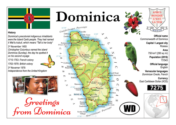 North America | Dominica MOTW - top quality approved by www.postcardsmarket.com specialists